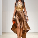 attolle-collection-at-africa-fashion-week-in-new-york-afwny-2012-1